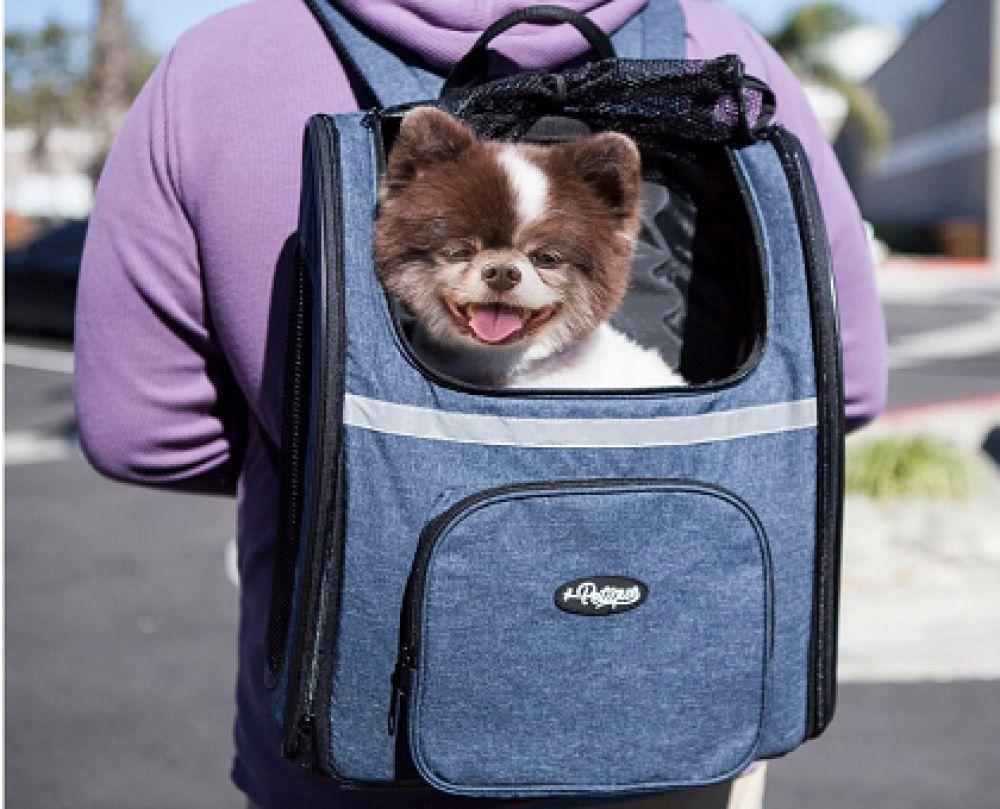 انواع باکس،کیف و قفس نگهداری حیوانات خانگی